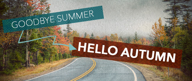 Goodbye summer, hello autumn at Arrow Bicycle
